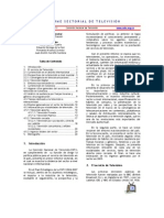 Informe Sectorial de Television 2006