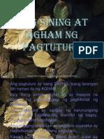 Ang Sining at Agham Ng Pagtuturo