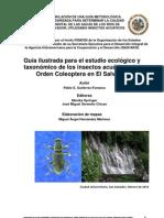 GUIA COLEOPTERA ACUATICOS EL SALVADOR.pdf