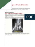 Traumatologia y Cirugia Ortopedica Veterinaria