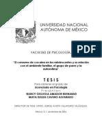 tesis_nancy_maya.pdf