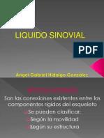 Angel Gabriel=liq. sinovial.pptx