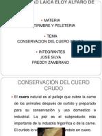 Conservacion de Cueros
