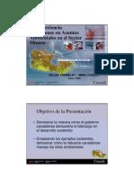 GerPasAm_Presentacion