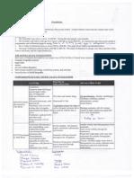 Social Studies FInal Review