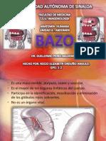 bazo-111205211433-phpapp02