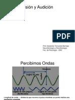 Clase de Visión y Audición - Fernando Bermejo