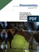 A tecnologia de microarranjos na identificação de genes de interesse na bovinocultura
