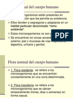 Fora Normal PowerPoint