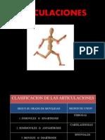 Anatomia - Articulaciones