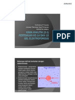 elektroforesis gel