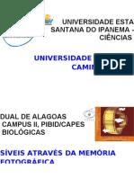 BANNER - CABEÇALHO