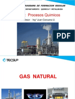 1. Gas Natural