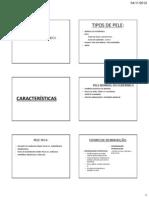 Biotipos Cutaneos