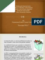 Reciclaje PFLC
