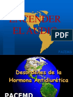 hormonaantidiurtica17agos-090817165242-phpapp02