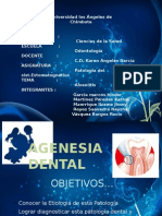 Patologia Del Sistema Estogamatologico