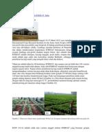 Pemuliaan Kacang Tanah di ICRISAT.docx