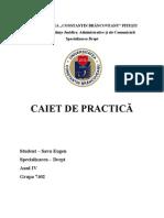 Caiet de practică 2013