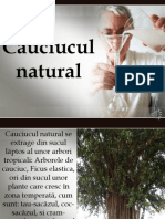 Cauciucul Natural Prezentare Power Point1
