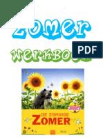 Zomer Werkboek Van Basischool Goochelaar Aarnoud Agricola Schoolvoorstellingen Met Goochelen en Buikspreken