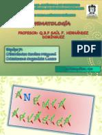 anemia aplasica II.pptx
