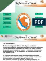 defensa-civil-1224304900687118-8 (1)
