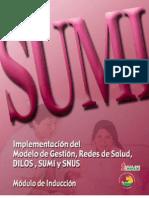 Sumi 3
