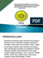 UJI EFEKTIVITAS EKSTRAK DAUN PEGAGAN (Centella asiatica.pptx