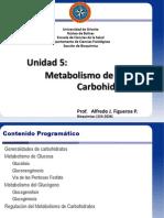 U 05 Metabolismo de Carbohidratos 2