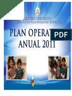 Plan Operativo Anual