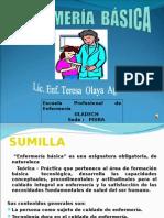 Curso Enfermeria Basica Hablado