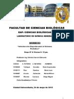 Laboratorio Quimica 4 Ok
