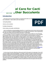General Care for Cacti and Other Succulents