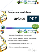 lipidios-120326184918-phpapp02.pptx