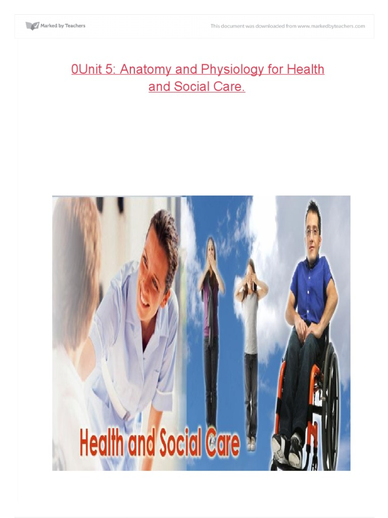 anatomy and physiology for health and social care essay Health and social care unit 19 essay btec level: 3 in health and social care unit 5: anatomy and physiology for health and social care assessor.