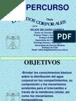 2.supercurso__liquidos_corporales