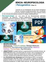 14 Clase Neurociencia (1).ppt