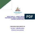 Bases Procompite Hvca