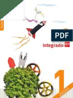 integrado1_B1