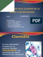 Clamidia Exposicion Power