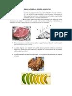 INFORME de conservacion.docx