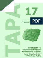 TAPA17.pdf
