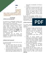 Guía de Apoyo - Mapa conceptual