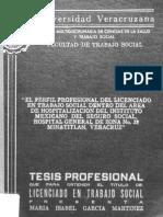 tesis--147