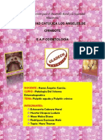 Monografia de Patologia II
