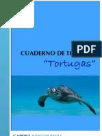 Cuaderno de Trabajo de Tortugas