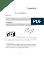 Capítulo 14 polifasicos
