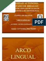 39790219 Arco Lingual