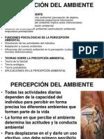 percepcin-del-ambiente-1224006680711082-9.ppt